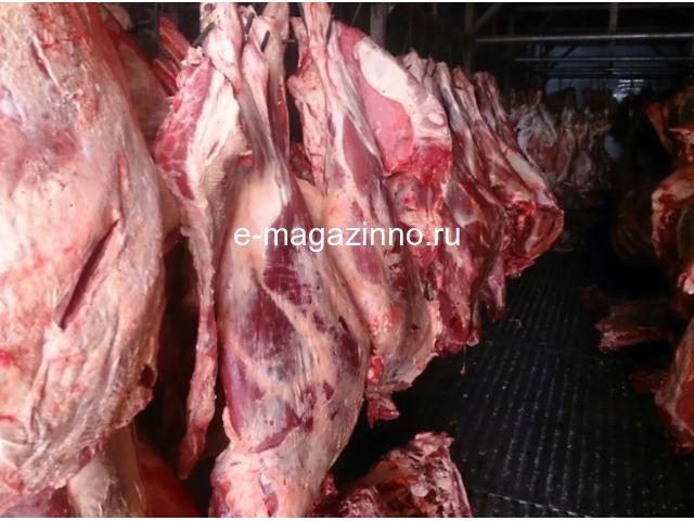 Мясо-говядина порода СИММЕНТАЛЬСКАЯ в полутушах - 1