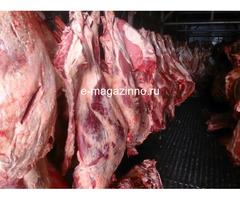 Мясо-говядина порода СИММЕНТАЛЬСКАЯ в полутушах - Изображение 1