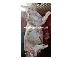 Мясо-говядина порода СИММЕНТАЛЬСКАЯ в полутушах - Изображение 2
